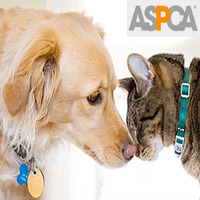 Aspca large
